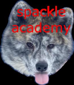 Spackle Academy